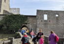 Zřícenina Hukvaldy, pozůstatky velkého hradu uprostřed rozlehlé obory