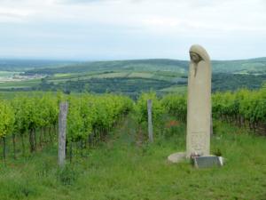 Vinohrady nad Pavlovem