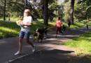 Běhejme a pomáhejme útulkům