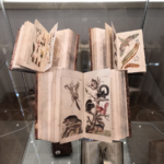 Sbírka zámeckých knih