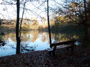 Pilský rybník